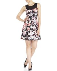 Rampage Black Floral Knit Dress pink - Lyst