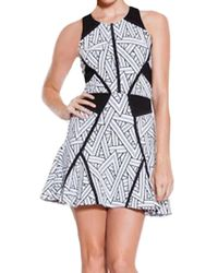 Parker Neve Fit  Flare Dress in Black  White - Lyst
