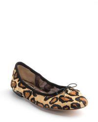 Sam Edelman Felicia Leopard Print Leather Flats - Lyst