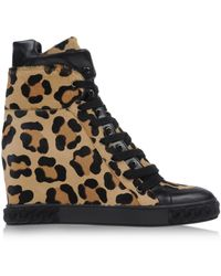 Casadei Hightops Trainers - Lyst