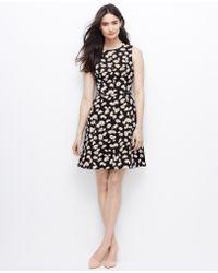Ann Taylor Petite Falling Floral Zip-Waist Dress - Lyst