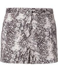 Tamara Mellon - Printed Shorts - Lyst