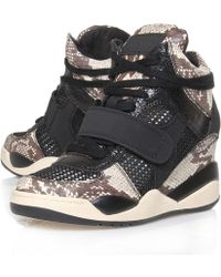 Ash Black Funky Python Hitop Wedge Trainers - Lyst