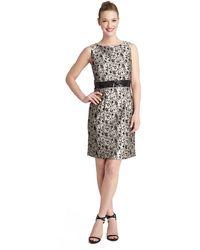 Tahari Petite Belinda Vine Print Shift Dress - Lyst