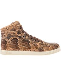 Gucci Python High-top Trainers - Lyst