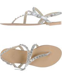 Ash Thong Sandal gray - Lyst