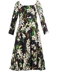 Dolce & Gabbana Orange Blossom-Print Dress - Lyst