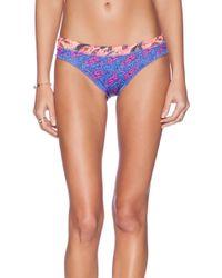 Maaji Majorelle Stallion Bikini Bottom - Lyst