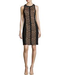 Michael Kors Leopard Lace Illusion Sheath Dress - Lyst