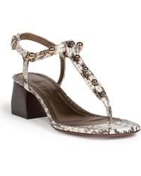 Lanvin Snakeskin Block-Heeled Sandals beige - Lyst