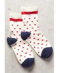 Hansel From Basel Candy Dot Crew Socks - Lyst