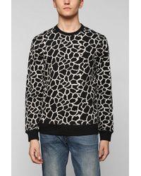 BDG - Bdg Giraffe Pullover Sweatshirt - Lyst