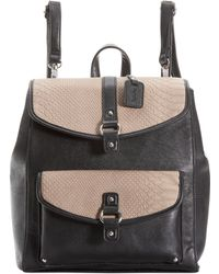 Kensie - Mixology Backpack - Lyst