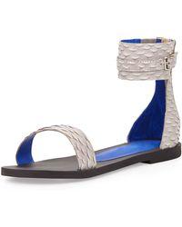 Jeffrey Campbell Islip Snakeembossed Printed Flat Sandal Gray Stylist Pick - Lyst