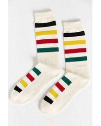 Pendleton - National Park Crew Sock - Lyst