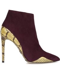 Daniele Michetti - Plum Suede And Elaphe Ankle Boots - Lyst