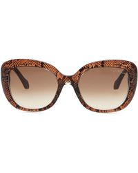 Roberto Cavalli Snakeprint Oval Sunglasses Blackrose Gold - Lyst