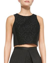 Tibi Worth Embroidered Cropped Top - Lyst