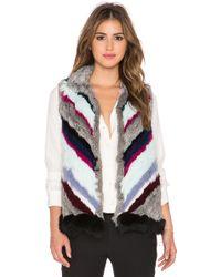 Elizabeth and James - Tanya Rabbit & Coyote Fur Vest - Lyst
