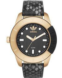 Adidas Originals | 'adh-1969' Leather Strap Watch | Lyst