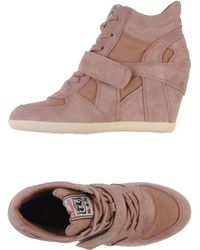 Ash Brown High-tops  Trainers - Lyst