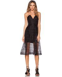 Nicholas Window Lace Bustier Dress - Lyst