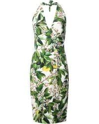 Dolce & Gabbana Floral Print Halter Dress - Lyst