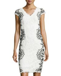 Adrianna Papell Fringed Contrast Embroidered Lace Dress - Lyst