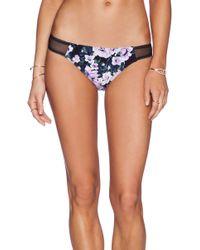 Mink Pink Blue Blooms Bikini Bottom - Lyst