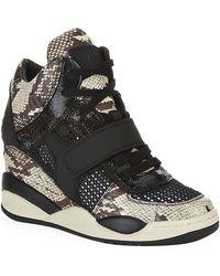 Ash Funky Wedge Sneaker - Lyst