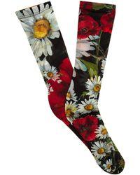 Dolce & Gabbana - Floral-print Socks - Lyst