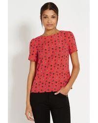Oasis Mini Swallow Bird Tshirt - Lyst