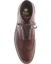 Alden Wing Tip Boots brown - Lyst