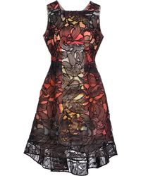 Peter Pilotto | Floral Lace and Silk Cocktail Dress | Lyst