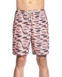 Tailor Vintage - Whale Print Swim Trunks - Lyst
