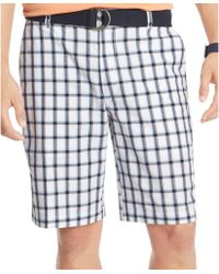Izod Belted Flat Front Plaid Shorts - Lyst
