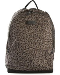Gucci Leopard Backpack - Lyst