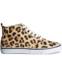 H&M Sneakers - Lyst