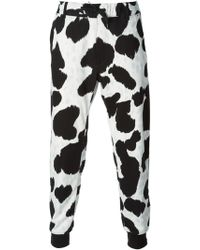 Moschino Cow Hide Print Track Trousers - Lyst