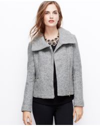 Ann Taylor Petite Wool Blend Moto Jacket - Lyst