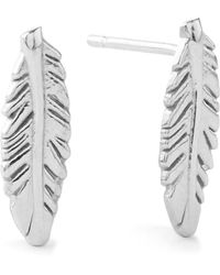 ALEX AND ANI Precious Metals Symbolic Feather Post Earrings - Lyst