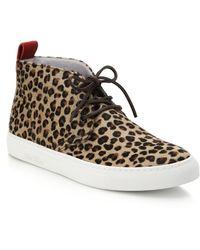 Del Toro Leopard-Print Pony Hair Chukka Sneakers - Lyst