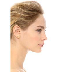 Elizabeth and James - Roni Hoop Earrings - Gold/clear - Lyst