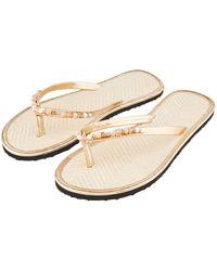 Accessorize - Shell Beaded Seagrass Flip Flops - Lyst