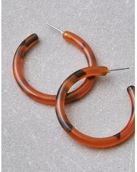 American Eagle - Tort Hoop Earrings - Lyst