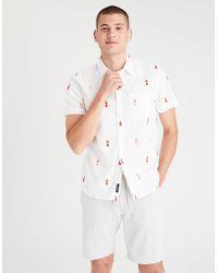 American Eagle - Ae Oxford Button-down Shirt - Lyst