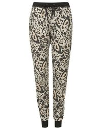 Topshop Petite Brushed Leopard Print Joggers - Lyst