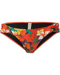 Obey - Tropical Bikini Bottom - Lyst