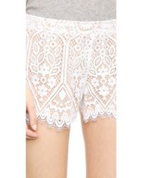 David Lerner - Lace Shorts - Poppy - Lyst