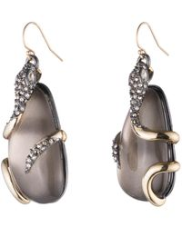 Alexis Bittar | Snake Wrapped Lucite Drop Wire Earring You Might Also Like | Lyst